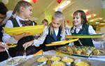 Порядок получения компенсации за школьное питание детей из многодетных семей