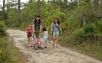 Налоговые льготы для многодетных семей: как правильно оформить